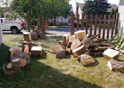 Sciage darbre sur la Rive-Sud de Montréal - Arbreiz Élagage, Émondage, Élagage et coupe d'arbre sur la rive-sud de montréal et à montréal
